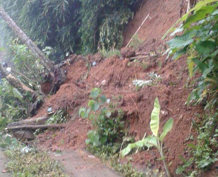 Tebing Longsor Tutup Jalan Desa Turus Kemiri