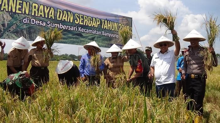 Pemkab dan TNI Sergap Petani di Desa Sumbersari